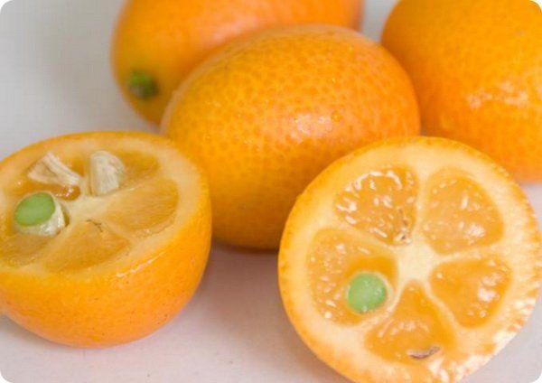 Κουμκουάτ Καρποί Φρούτων