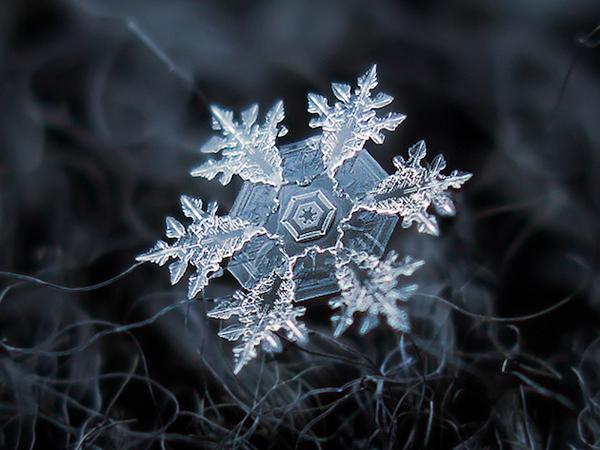 Εκπληκτικές Νιφάδες Χιονιού από τον Alexey Klijatov