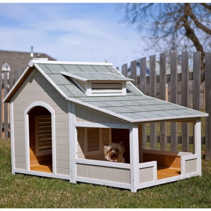 Πολυτελή Σπίτια Και Κρεβάτια Για Σκύλους