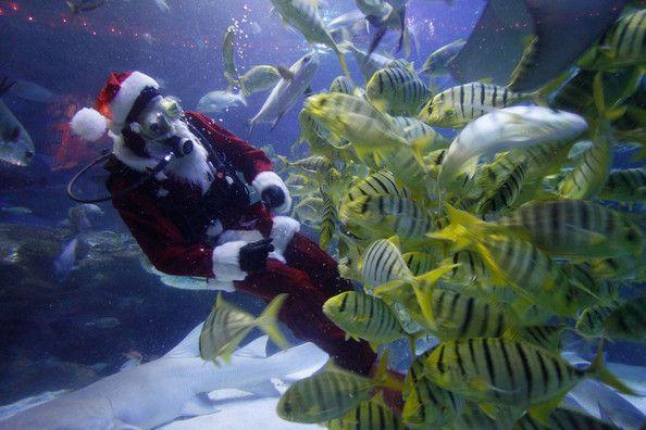 Η Μαλαισία προετοιμάζεται για τα Χριστούγεννα