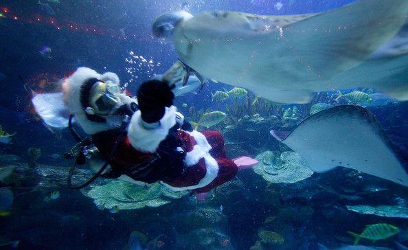Malaysia prepares for Christmas
