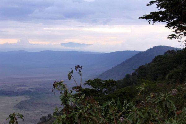 Εθνικό Πάρκο Σερενγκέτι