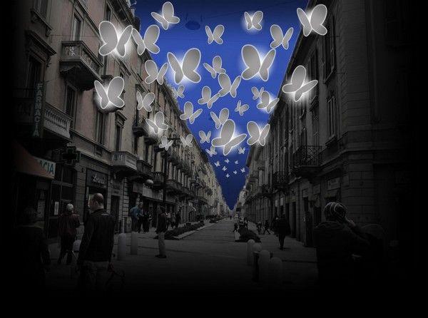 Φώτα Πεταλούδες