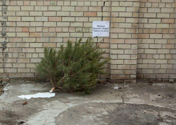 Christmas Tree Banda