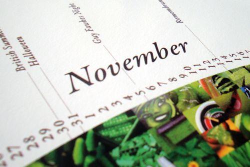 Pantone Calendar 2011