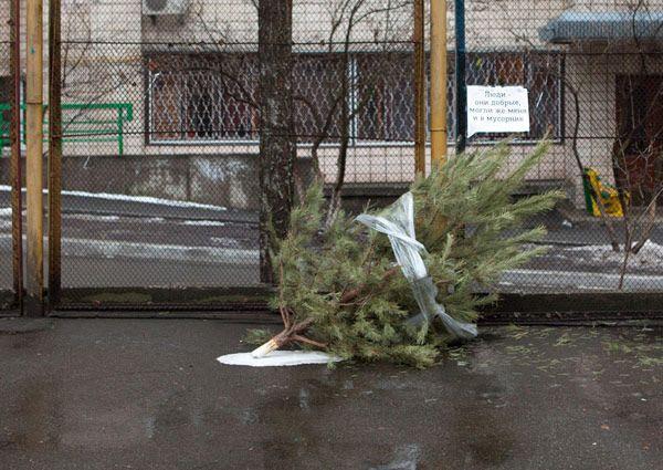 Talking Christmas Tree