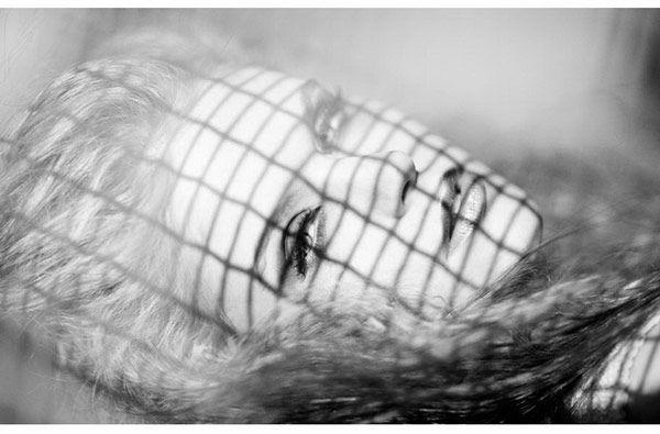 Φωτογράφος Ronny Danielsen