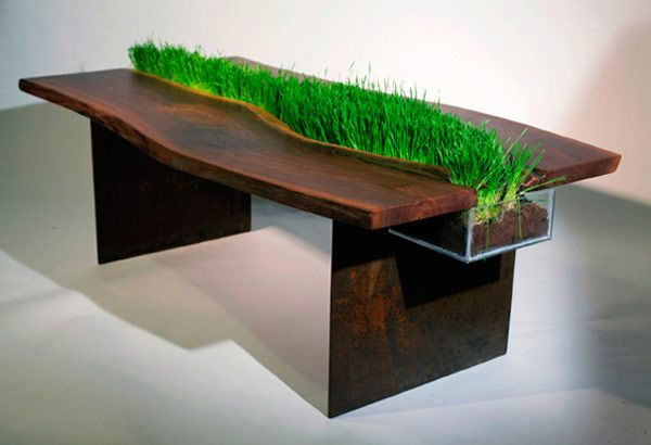 Cat Friendly Planter Table by Emily Wettstein
