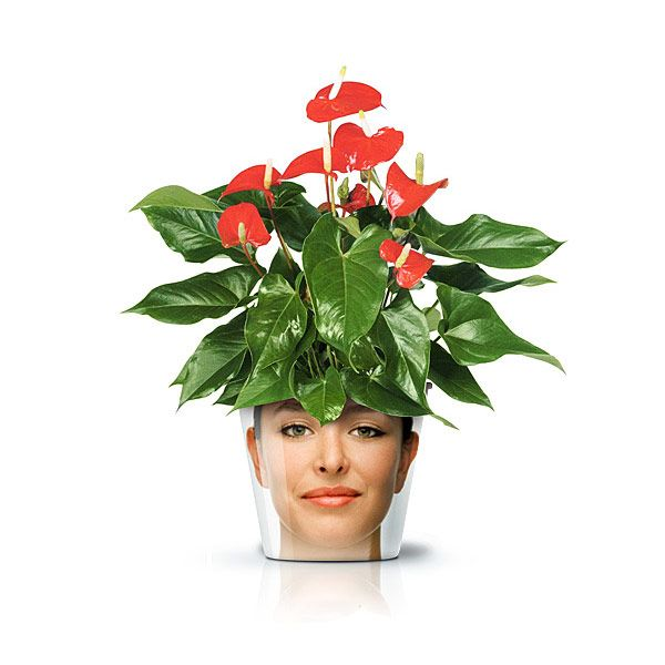 Funny Flower Pots GOOD