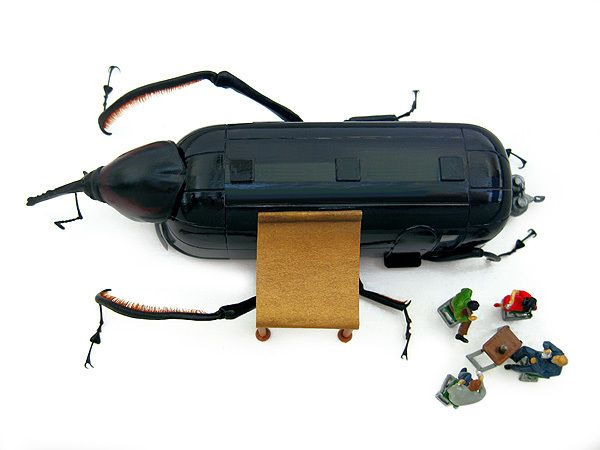Stuffed Beetles Project Micromachina
