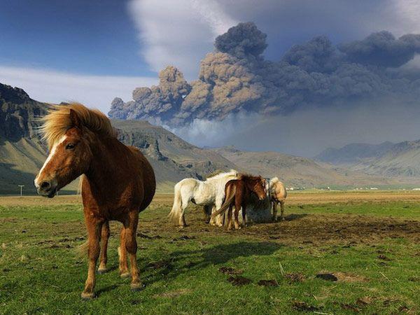 Icelandic Eruption Hans Strand