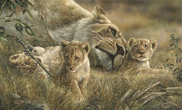 Paintings Denis Mayer Jr.