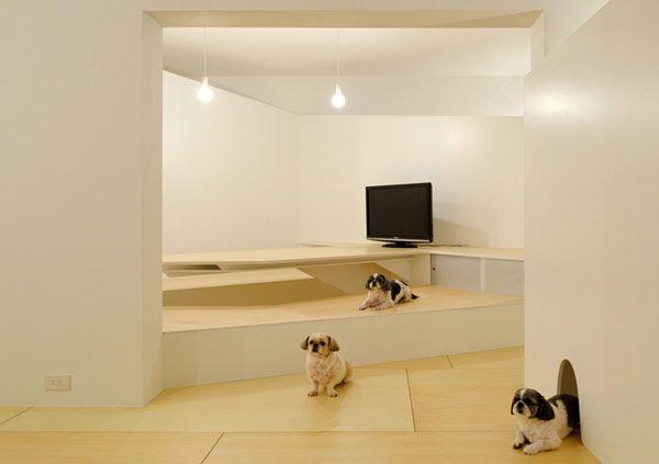 Τα ζώα στην αρχιτεκτονική