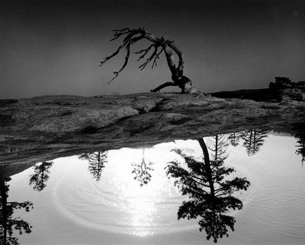 Φωτογράφος Uelsmann Jerry
