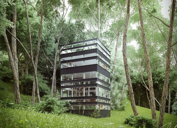 Japanese House in the Forest by Ando Studio