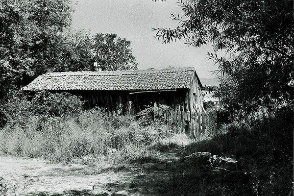 Landscapes Carol Díaz