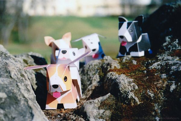 Travel paper dogs in Pavlovsk