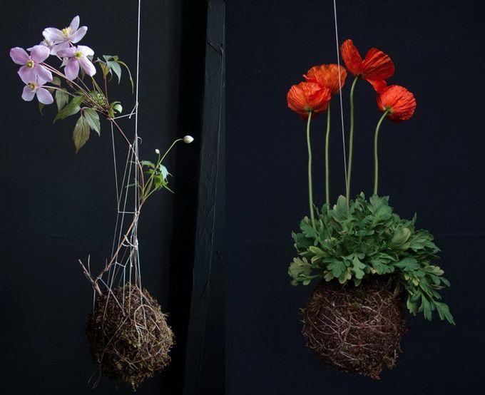 Λουλούδια από τον Fedor van der Valk