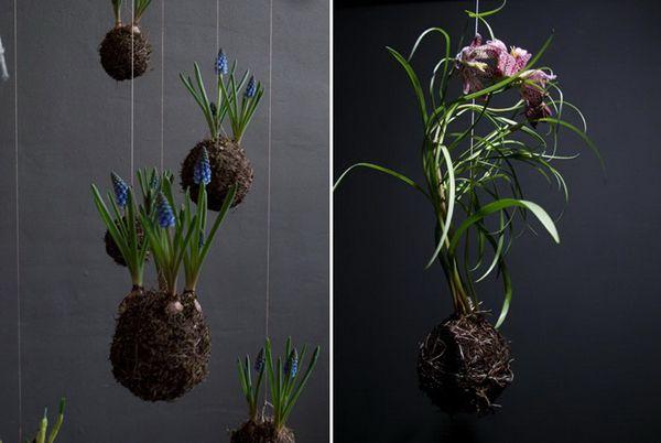 Flowers Fedor van der Valk