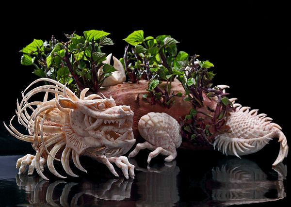 Food Carving Photos by Ilian Iliev-21