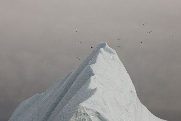 Simon Harsent-iceberg-07