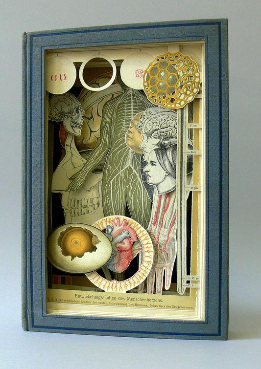 Alexander Korzer-Robinson's Book Art-12
