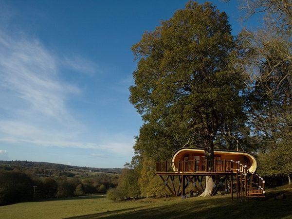"""Luxury Tree House """"Eco Perch""""-05"""