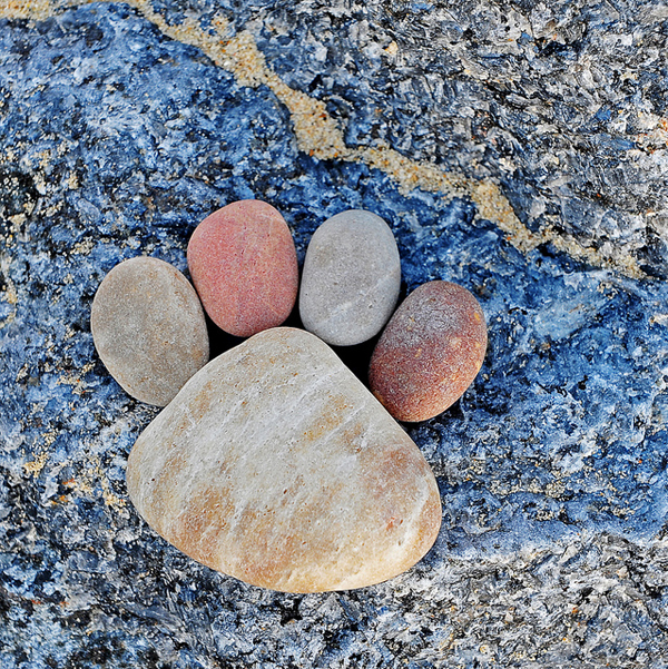 Stone Footprints by Iain Blake-12