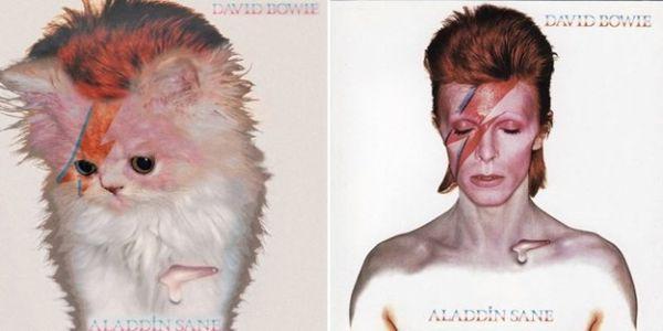 Αγαπημένα Album Art, αλλά με Γατάκια 01