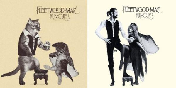 Αγαπημένα Album Art, αλλά με Γατάκια 03
