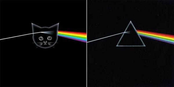 Αγαπημένα Album Art, αλλά με Γατάκια 04
