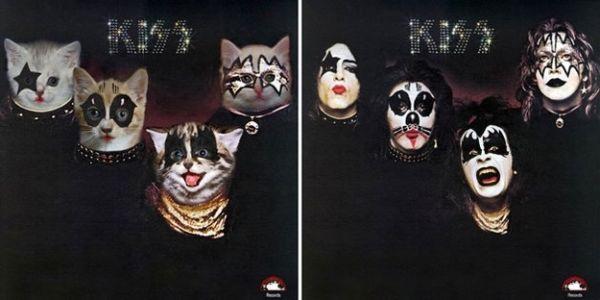 Αγαπημένα Album Art, αλλά με Γατάκια 06